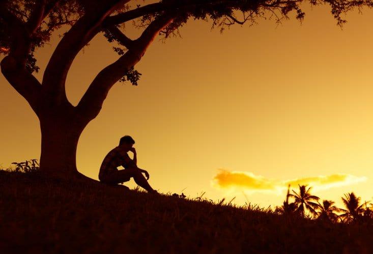 man sitting under tree at sunset